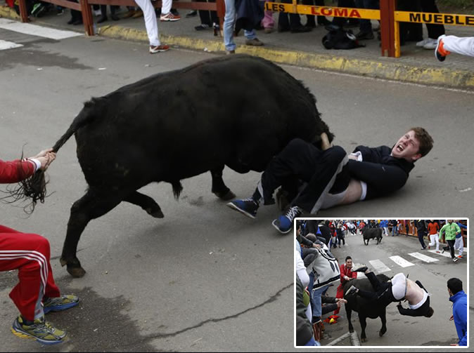 Man seriously gored by bull during festival