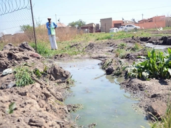 Zimbabwean woman in SA arrested after throwing newborn in sewage