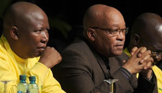 Malema apologizes to SA for Zuma 'mistake'
