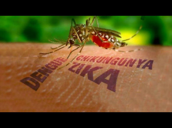Sexually-transmitted case of Zika virus reported in US