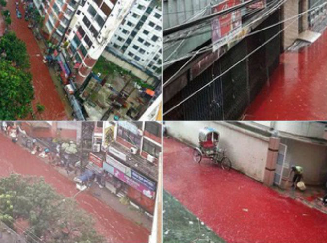 Rivers of blood flow down streets of Dhaka