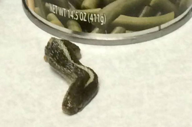Woman finds decapitated snake's head hidden in her can of green beans