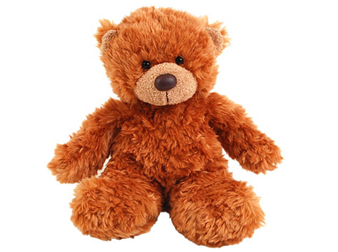 Man arrested after raping teddy bear