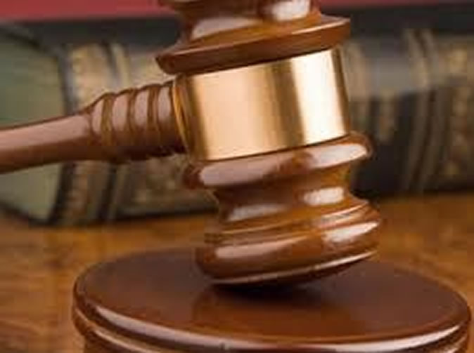 Security guard fined for raping chicken