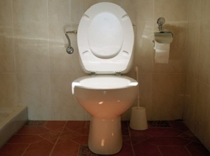 Woman hospitalised after painful toilet prank